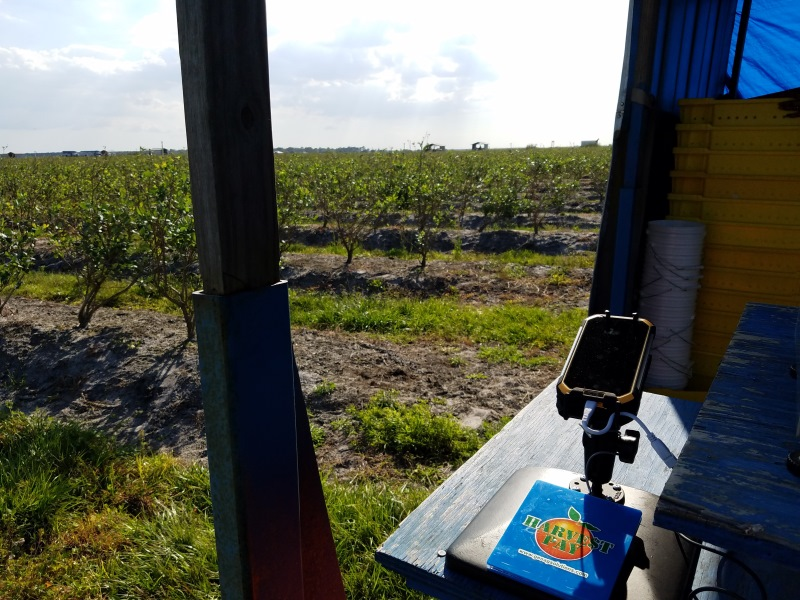 NFC antenna extender working in a harvest weighing application